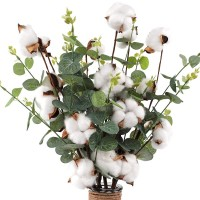 "CEWOR 6pcs 21"" Cotton Stems - 4 Cotton Heads with Eucalyptus Leaves - for Farmhouse Style Floral Decorations"