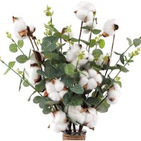 "CEWOR 6pcs 23.5"" Cotton Stems 4 Cotton Heads with Eucalyptus Leaves for Home Farmhouse Style Floral Decoration"