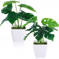 CEWOR 2 Packs Artificial Mini Greenery Potted Plants Fake Monstera Deliciosa and Scindapsus Leaves in Small Plastic Pot for Home Office Windowsill Bathroom Desk Decor